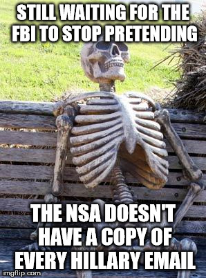 THE NSA HAS THE EMAILS! THE NSA HAS THE EMAILS! | STILL WAITING FOR THE FBI TO STOP PRETENDING THE NSA DOESN'T HAVE A COPY OF EVERY HILLARY EMAIL | image tagged in memes,waiting skeleton,hillary clinton,hillary emails,hillary clinton meme | made w/ Imgflip meme maker