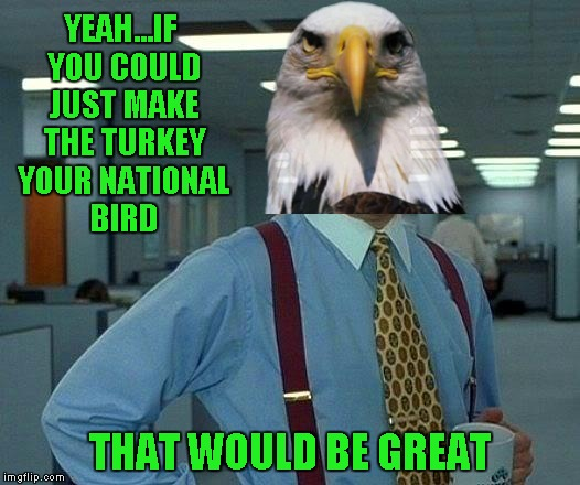 The Eagle is not pleased... | YEAH...IF YOU COULD JUST MAKE THE TURKEY YOUR NATIONAL BIRD THAT WOULD BE GREAT | image tagged in memes,that would be great | made w/ Imgflip meme maker