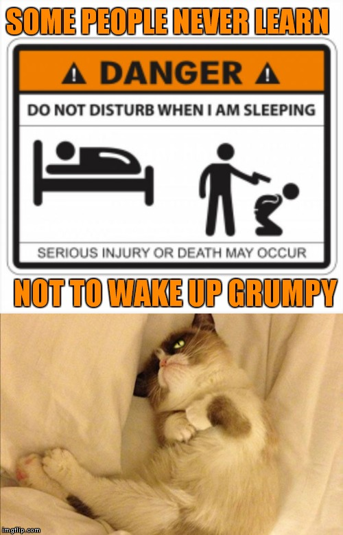 Do you want to keep that hand?? |  SOME PEOPLE NEVER LEARN; NOT TO WAKE UP GRUMPY | image tagged in grumpy cat,disturbed,danger,warning sign | made w/ Imgflip meme maker