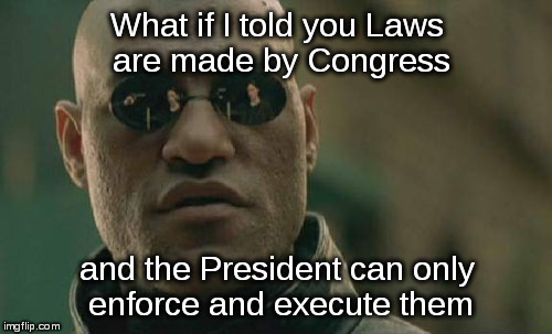 Its called The Executive Branch for a reason |  What if I told you Laws are made by Congress; and the President can only enforce and execute them | image tagged in memes,matrix morpheus,laws,congress,president | made w/ Imgflip meme maker