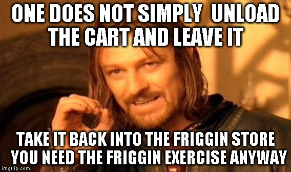 One Does Not Simply Meme | ONE DOES NOT SIMPLY  UNLOAD THE CART AND LEAVE IT TAKE IT BACK INTO THE FRIGGIN STORE  YOU NEED THE FRIGGIN EXERCISE ANYWAY | image tagged in memes,one does not simply | made w/ Imgflip meme maker