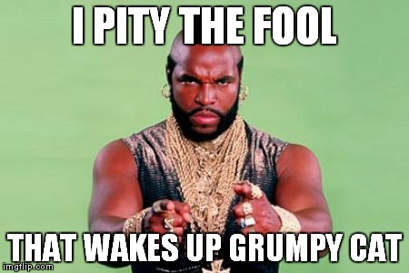I PITY THE FOOL THAT WAKES UP GRUMPY CAT | made w/ Imgflip meme maker