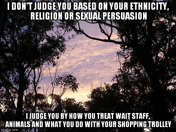 I DON'T JUDGE YOU BASED ON YOUR ETHNICITY, RELIGION OR SEXUAL PERSUASION I JUDGE YOU BY HOW YOU TREAT WAIT STAFF, ANIMALS AND WHAT YOU DO WI | made w/ Imgflip meme maker