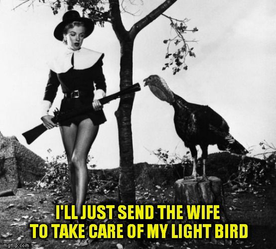 I'LL JUST SEND THE WIFE TO TAKE CARE OF MY LIGHT BIRD | made w/ Imgflip meme maker