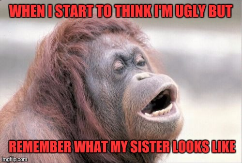 Monkey OOH | WHEN I START TO THINK I'M UGLY BUT REMEMBER WHAT MY SISTER LOOKS LIKE | image tagged in memes,monkey ooh | made w/ Imgflip meme maker