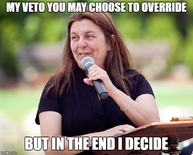 IF ONLY VOTING MATTERED | MY VETO YOU MAY CHOOSE TO OVERRIDE BUT IN THE END I DECIDE | image tagged in election,mayor,veto,city council | made w/ Imgflip meme maker
