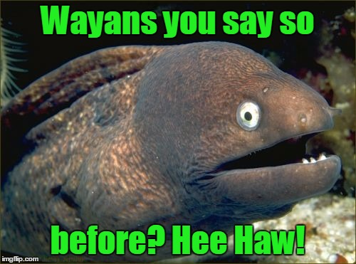 Wayans you say so before? Hee Haw! | made w/ Imgflip meme maker