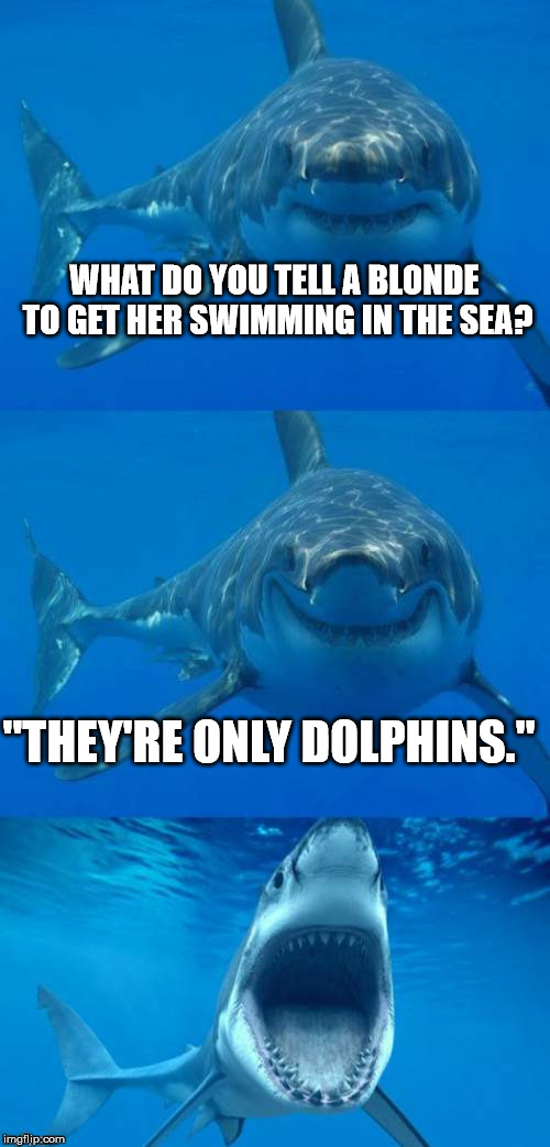"Mwa hahahaha | WHAT DO YOU TELL A BLONDE TO GET HER SWIMMING IN THE SEA? ""THEY'RE ONLY DOLPHINS."" 