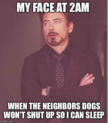 Face You Make Robert Downey Jr Meme | MY FACE AT 2AM WHEN THE NEIGHBORS DOGS WON'T SHUT UP SO I CAN SLEEP | image tagged in memes,face you make robert downey jr | made w/ Imgflip meme maker