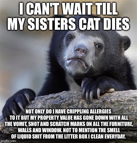 17w2gc i love cats but they don't love me imgflip