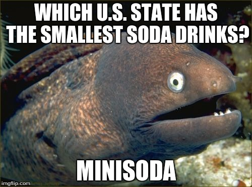 Bad Joke Eel Meme | WHICH U.S. STATE HAS THE SMALLEST SODA DRINKS? MINISODA | image tagged in memes,bad joke eel | made w/ Imgflip meme maker