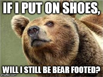 Smug Bear | IF I PUT ON SHOES, WILL I STILL BE BEAR FOOTED? | image tagged in memes,smug bear | made w/ Imgflip meme maker