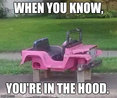 Honey. Lock the doors. | WHEN YOU KNOW, YOU'RE IN THE HOOD. | image tagged in in the hood,lol,funny,meme | made w/ Imgflip meme maker