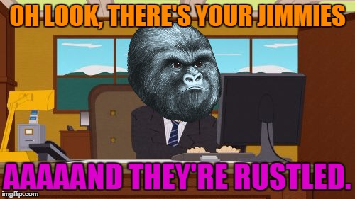Aaaaand Its Gone Meme | OH LOOK, THERE'S YOUR JIMMIES AAAAAND THEY'RE RUSTLED. | image tagged in memes,aaaaand its gone,rustle my jimmies,gorilla | made w/ Imgflip meme maker