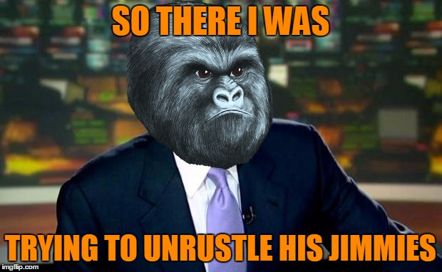 Brian Williams Was There Meme | SO THERE I WAS TRYING TO UNRUSTLE HIS JIMMIES | image tagged in memes,brian williams was there,rustle my jimmies,gorilla | made w/ Imgflip meme maker