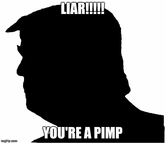 Anonymous Trump | LIAR!!!!! YOU'RE A PIMP | image tagged in anonymous trump | made w/ Imgflip meme maker