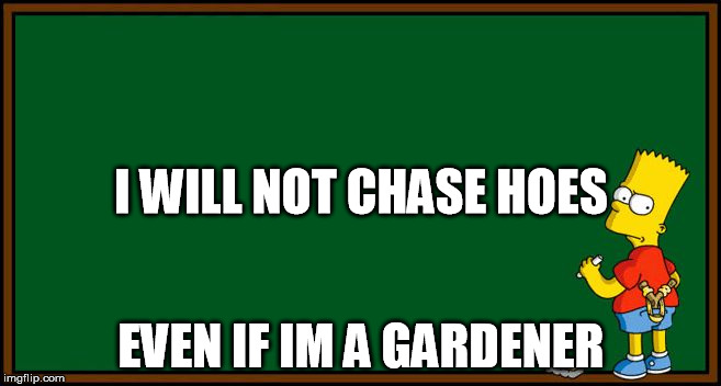 simpsons chalkboard sketch | EVEN IF IM A GARDENER I WILL NOT CHASE HOES | image tagged in simpsons chalkboard sketch,comics/cartoons,funny memes,memes | made w/ Imgflip meme maker