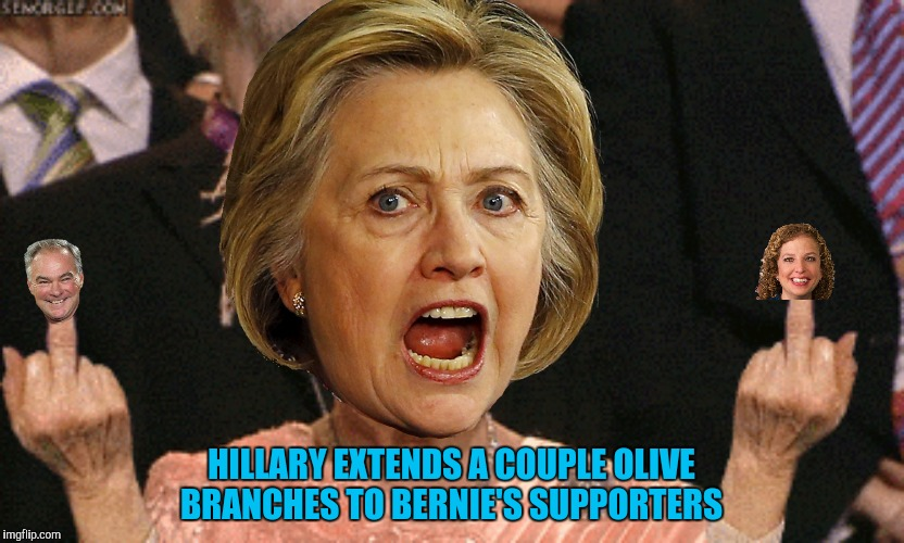 Number one my butt, you're number two! | HILLARY EXTENDS A COUPLE OLIVE BRANCHES TO BERNIE'S SUPPORTERS | image tagged in tim kaine,debbie wasserman schultz,hillary clinton,olive branch,nsfw | made w/ Imgflip meme maker