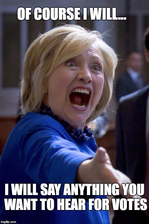 Hillary Shouting | OF COURSE I WILL... I WILL SAY ANYTHING YOU WANT TO HEAR FOR VOTES | image tagged in hillary shouting | made w/ Imgflip meme maker