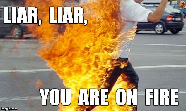 Pants On Fire |  LIAR,  LIAR, YOU  ARE  ON  FIRE | image tagged in meme,firefly,liar liar,liar liar pants on fire,death by fire,buddhist monk suicide | made w/ Imgflip meme maker