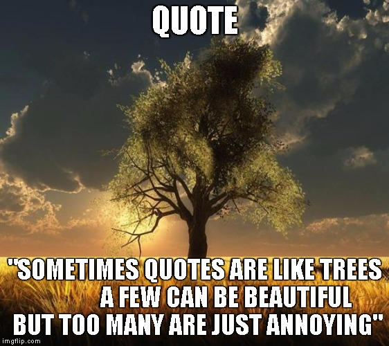 Tree Of Life Imgflip Best Tree Of Life Quote