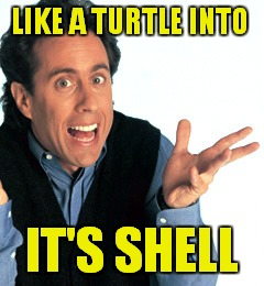 LIKE A TURTLE INTO IT'S SHELL | made w/ Imgflip meme maker