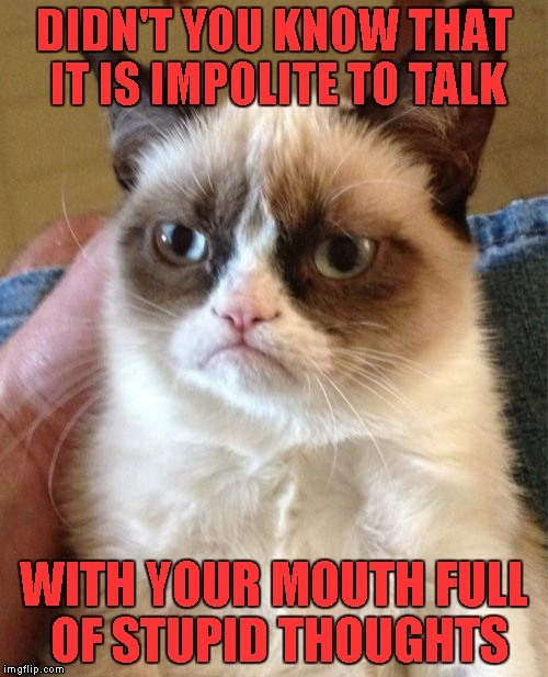 Grumpy Cat Meme | DIDN'T YOU KNOW THAT IT IS IMPOLITE TO TALK WITH YOUR MOUTH FULL OF STUPID THOUGHTS | image tagged in memes,grumpy cat | made w/ Imgflip meme maker