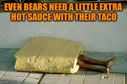 EVEN BEARS NEED A LITTLE EXTRA HOT SAUCE WITH THEIR TACO | made w/ Imgflip meme maker