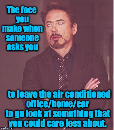 Face You Make Robert Downey Jr Meme | The face you make when someone asks you to leave the air conditioned office/home/car to go look at something that you could care less about. | image tagged in memes,face you make robert downey jr,funny,evilmandoevil | made w/ Imgflip meme maker