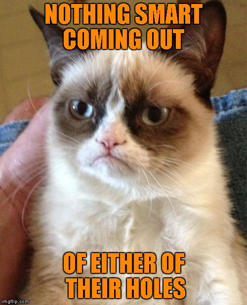 Grumpy Cat Meme | NOTHING SMART COMING OUT OF EITHER OF THEIR HOLES | image tagged in memes,grumpy cat | made w/ Imgflip meme maker