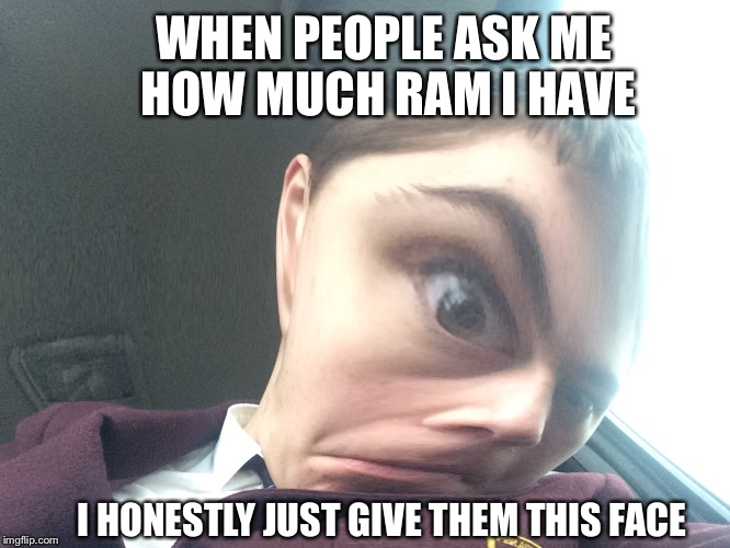 WHEN PEOPLE ASK ME HOW MUCH RAM I HAVE I HONESTLY JUST GIVE THEM THIS FACE | image tagged in hold up | made w/ Imgflip meme maker