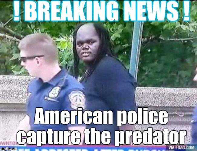 I don't know how they did it, but.... | ! BREAKING NEWS ! American police capture the predator | image tagged in predator captured,predator,predator-alien-guy,police | made w/ Imgflip meme maker