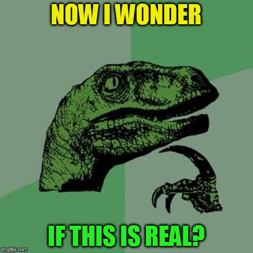 Philosoraptor Meme | NOW I WONDER IF THIS IS REAL? | image tagged in memes,philosoraptor | made w/ Imgflip meme maker