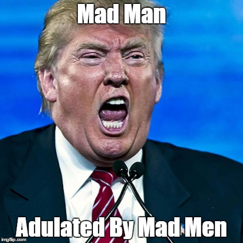 Image result for donald trump mad man pax on both houses