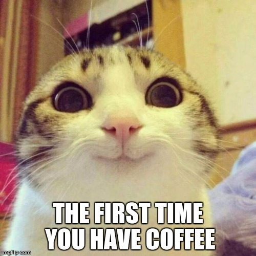 Smiling Cat Meme | THE FIRST TIME YOU HAVE COFFEE | image tagged in memes,smiling cat | made w/ Imgflip meme maker