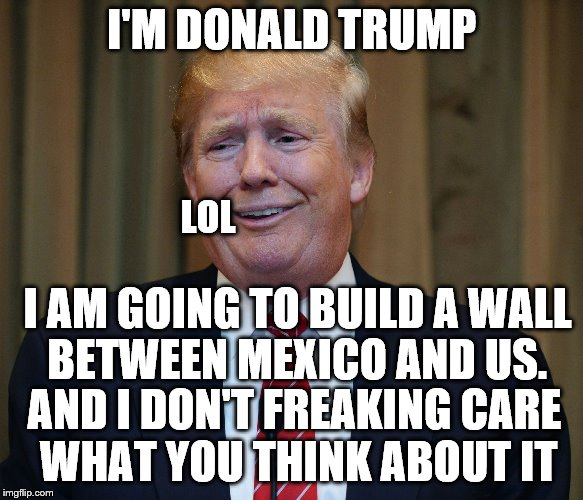 trump goofy face |  I'M DONALD TRUMP; LOL; I AM GOING TO BUILD A WALL BETWEEN MEXICO AND US. AND I DON'T FREAKING CARE WHAT YOU THINK ABOUT IT | image tagged in trump goofy face | made w/ Imgflip meme maker