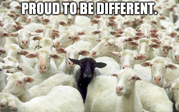 black sheep | PROUD TO BE DIFFERENT. | image tagged in black sheep | made w/ Imgflip meme maker