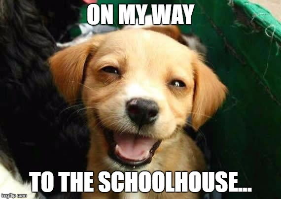 dogsmile2 | ON MY WAY TO THE SCHOOLHOUSE... | image tagged in dogsmile2 | made w/ Imgflip meme maker