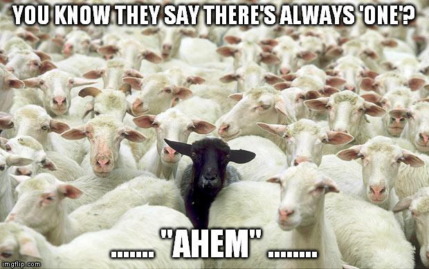 "black sheep | YOU KNOW THEY SAY THERE'S ALWAYS 'ONE'? ....... ""AHEM"" ........ 