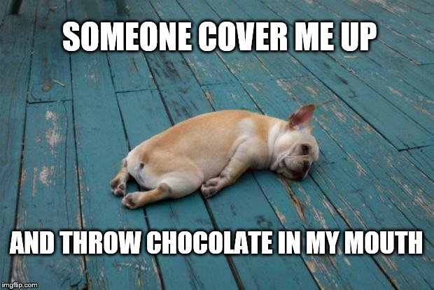 Throw Chocolate | SOMEONE COVER ME UP AND THROW CHOCOLATE IN MY MOUTH | image tagged in tired dog,chocolate,exhausted,someone,puppy,sad | made w/ Imgflip meme maker