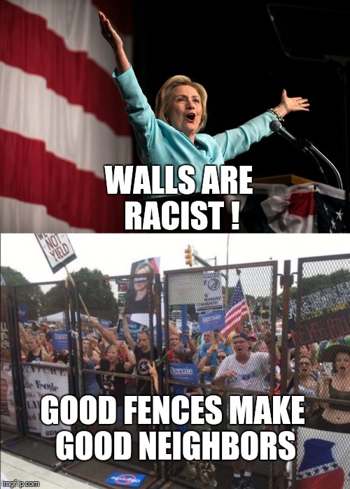 Free Speech Zone may as well be Mexico |  WALLS ARE RACIST ! GOOD FENCES MAKE GOOD NEIGHBORS | image tagged in free speech,bernie sanders,hillary clinton,protesters,dnc | made w/ Imgflip meme maker