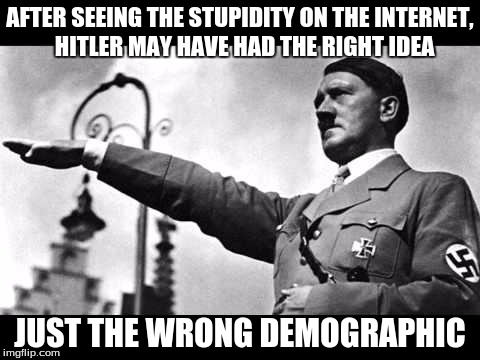 heil hitler |  AFTER SEEING THE STUPIDITY ON THE INTERNET,  HITLER MAY HAVE HAD THE RIGHT IDEA; JUST THE WRONG DEMOGRAPHIC | image tagged in heil hitler | made w/ Imgflip meme maker