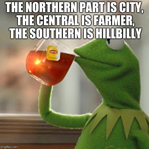 But Thats None Of My Business Meme | THE NORTHERN PART IS CITY, THE CENTRAL IS FARMER, THE SOUTHERN IS HILLBILLY | image tagged in memes,but thats none of my business,kermit the frog | made w/ Imgflip meme maker