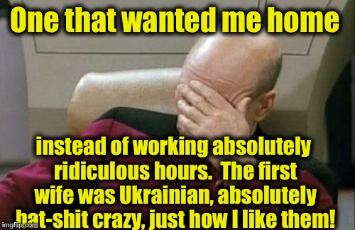 Captain Picard Facepalm Meme | One that wanted me home instead of working absolutely ridiculous hours.  The first wife was Ukrainian, absolutely bat-shit crazy, just how I | image tagged in memes,captain picard facepalm | made w/ Imgflip meme maker