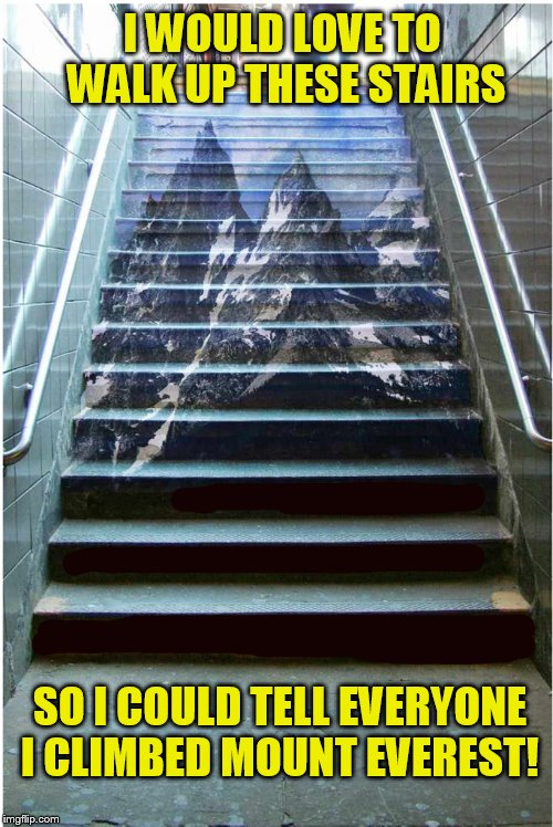 It would be true ''In a way''  | I WOULD LOVE TO WALK UP THESE STAIRS SO I COULD TELL EVERYONE I CLIMBED MOUNT EVEREST! | image tagged in funny meme,mountain,climb,stairs,climbing,funny memes | made w/ Imgflip meme maker