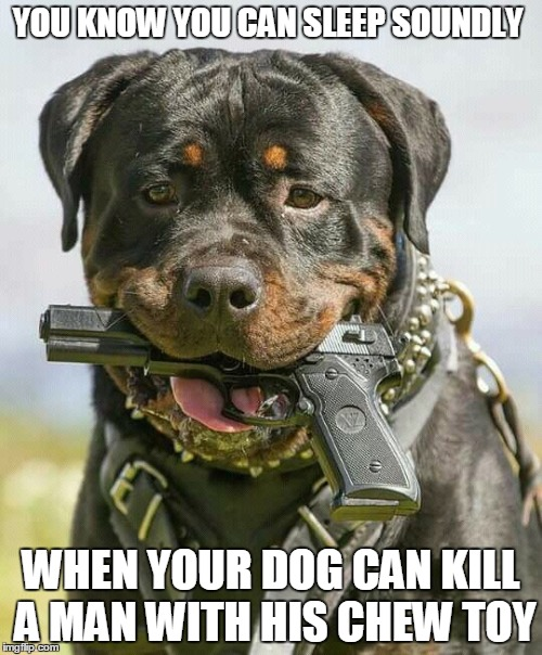 Image Tagged In Holstered Attack Dogs Dogs Imgflip