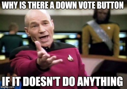 Picard Wtf Meme | WHY IS THERE A DOWN VOTE BUTTON IF IT DOESN'T DO ANYTHING | image tagged in memes,picard wtf | made w/ Imgflip meme maker