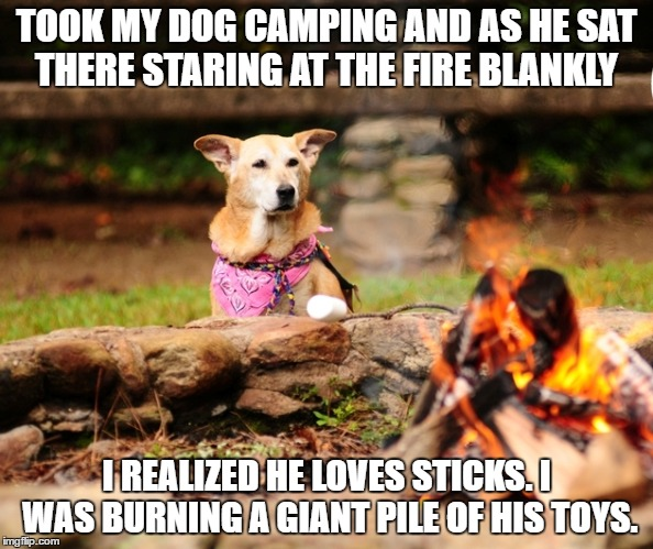 the torture | TOOK MY DOG CAMPING AND AS HE SAT THERE STARING AT THE FIRE BLANKLY I REALIZED HE LOVES STICKS. I WAS BURNING A GIANT PILE OF HIS TOYS. | image tagged in dog,campfire,toys,sad,funny | made w/ Imgflip meme maker