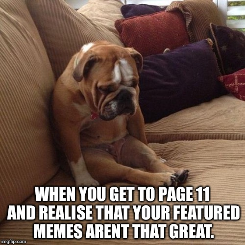 sad dog | WHEN YOU GET TO PAGE 11 AND REALISE THAT YOUR FEATURED MEMES ARENT THAT GREAT. | image tagged in sad dog | made w/ Imgflip meme maker