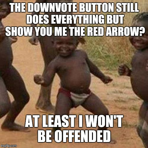 Third World Success Kid Meme | THE DOWNVOTE BUTTON STILL DOES EVERYTHING BUT SHOW YOU ME THE RED ARROW? AT LEAST I WON'T BE OFFENDED | image tagged in memes,third world success kid | made w/ Imgflip meme maker